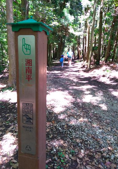 湘南平ハイキング2