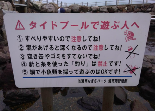 江ノ島磯遊び2