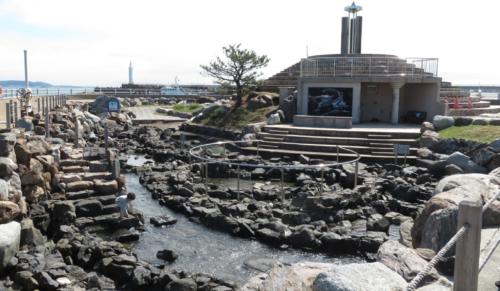 江の島のサムエル・コッキング苑