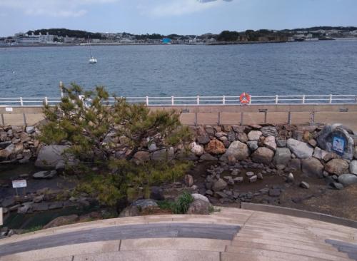 江ノ島のさざえ島で磯遊び