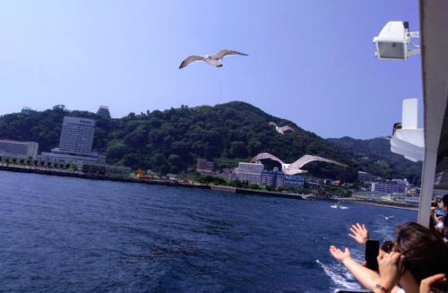 初島フェリーカモメ