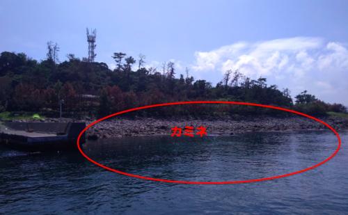 初島シュノーケリングカミネ2