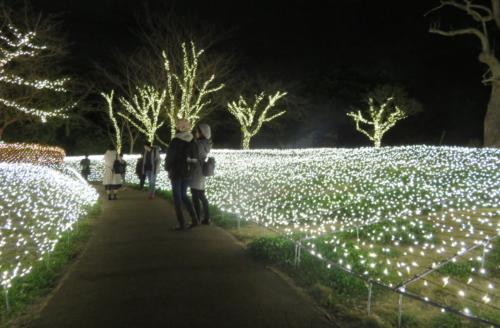 亀ヶ岡広場3