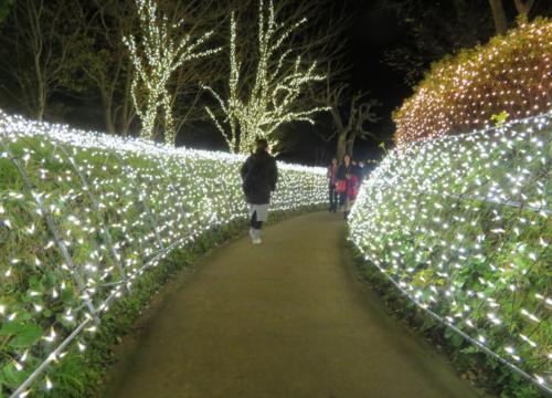 亀ヶ岡広場2