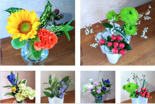 ブルーミーライフ 夏の花